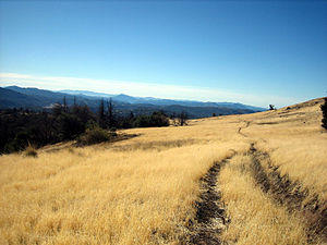 Cuyamaca Rancho State Park - The West Mesa Trail in Cuyamaca Rancho State Park
