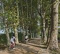 Cycling in Domaine de Restinclières, Prades-le-Lez.jpg