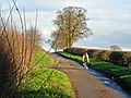 Cycling to Upton - geograph.org.uk - 294627.jpg