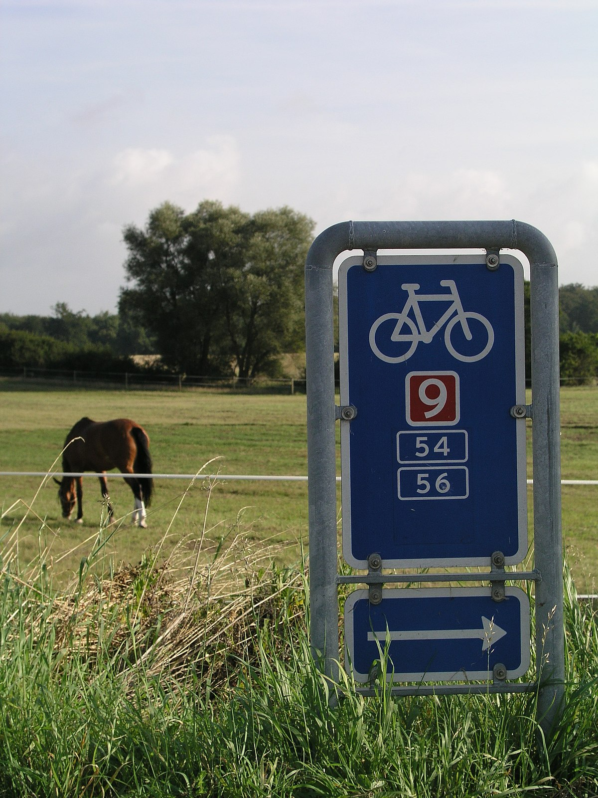 Danmarks Nationale Cykelruter Wikipedia Den Frie Encyklopaedi