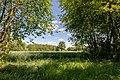 Dülmen, Dernekamp, Feld -- 2020 -- 6989.jpg