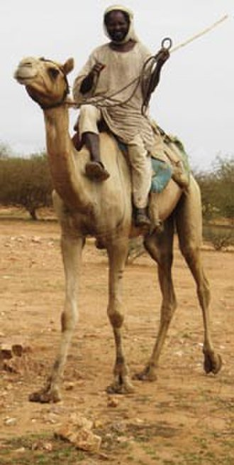 War in Darfur - Arab Janjaweed tribes have been a major player in the conflict.