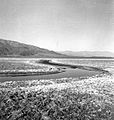 Death Valley - USGS (Hunt, CB 952).jpg