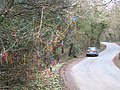 Decorated tree beside the road at Chygarkye Wood - geograph.org.uk - 1764391.jpg