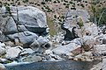 Deep Creek Hot Springs Mojave River 25.jpg