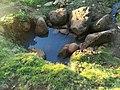 Deep Well2.jpg