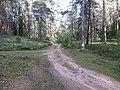 Degučių sen., Lithuania - panoramio (157).jpg