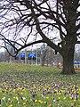 Den Haag - 2006 - panoramio - StevenL.jpg
