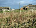 Derelict Barns - geograph.org.uk - 624549.jpg
