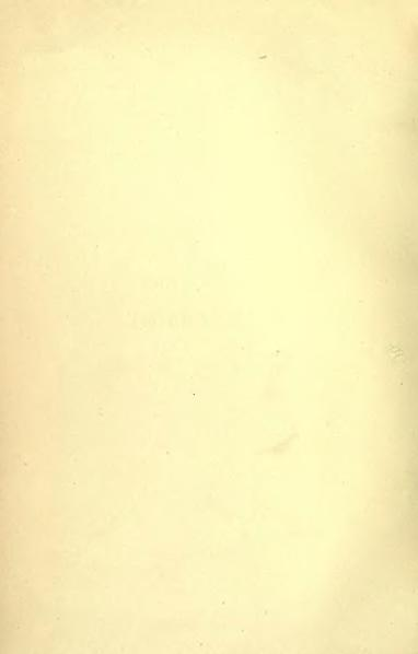 File:Dictionary of National Biography volume 13.djvu