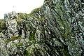 Disused quarry - geograph.org.uk - 1558984.jpg
