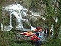 Dolanog Falls - geograph.org.uk - 5686.jpg
