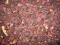 Dried hibiscus for tisane.jpg