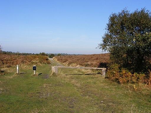 Dunwich Heath, footpath - geograph.org.uk - 1733710