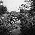 Dve perici ob potoku pri Logu 1951.jpg