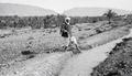 ETH-BIB-Arbeiter bei Anlage zur künstlichen Bewässerung in Biskra-Mittelmeerflug 1928-LBS MH02-04-0175.tif