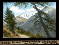 ETH-BIB-Piz Palü, vom oberen Schafberg-Weg über Pontresina-Dia 247-15967.tif