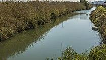 El riu Xúquer al seu pas per Fortaleny (País Valencià), 2.jpg