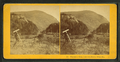 Elephant's Head, Crawford Notch, White Mts, from Robert N. Dennis collection of stereoscopic views 3.png