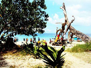 Elephant beach , andaman and nicobar island.jpg