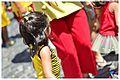 Ensaio aberto do Bloco Eu Acho é Pouco - Prévias Carnaval 2013 (8420519636).jpg