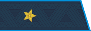 Alexander Zakharchenko - Image: Epaulets Major General Air Force of the Russian Federation