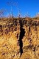 Erosion - panoramio (5).jpg