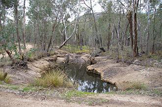 Chiltern-Mt Pilot National Park - Erosion prone soils of Mt Pilot section.