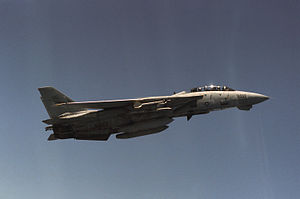 F-14A VF-24 Sparrows and Sidewinders.JPEG