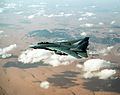 F-14A VF-33 OpDesertStormCAP.JPEG