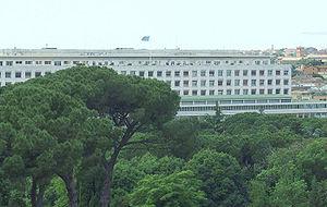 FAO Roma 032 cleared