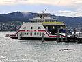 FS Horgen - Zürichsee - Meilen - Dampfschiff Stadt Rapperswil 2012-07-15 17-50-17 (P7000).JPG