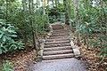FallingWaters fall colors - panoramio (22).jpg
