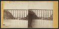 Falls & Bridge, Portage, N.Y, by Knight, W. M., 1841-1881 2.png