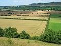 Farmland, Maiden Bradley - geograph.org.uk - 909709.jpg