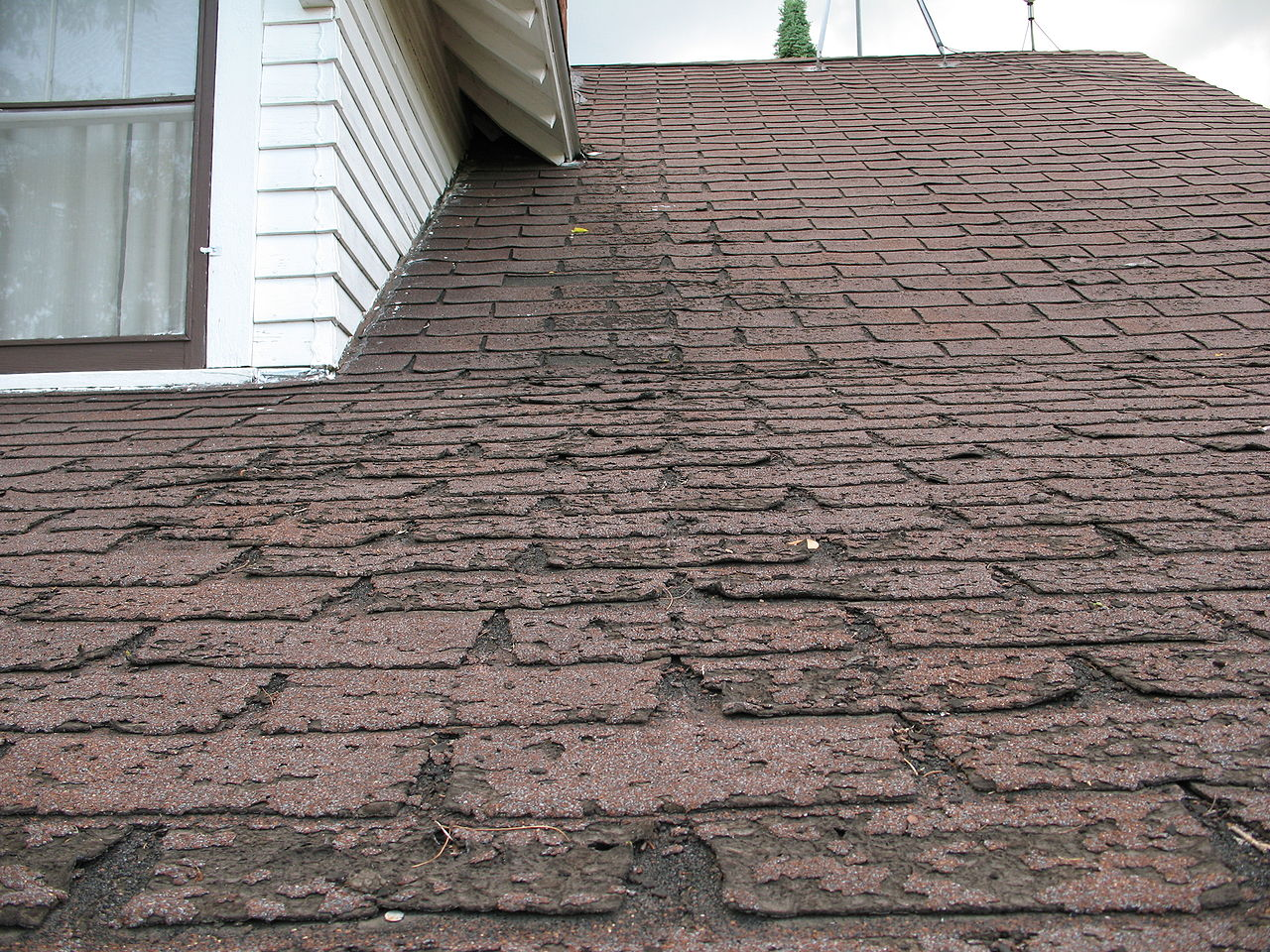 File Faster Wear Of Asphalt Shingles Along Eaves Jpg