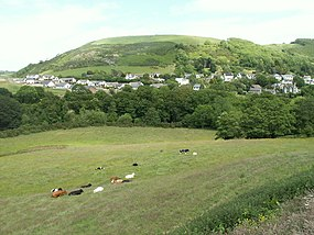 Field and housing, Llanfarian - geograph.org.uk - 18740.jpg