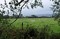 Field near East Lydeard - geograph.org.uk - 1407962.jpg