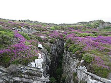 Fissured rock - isle of man.jpg