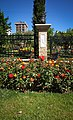 Five City Blocks Smell Of Roses - panoramio (1).jpg