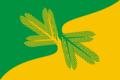 Flag of Tayozhny (Khanty-Mansyisky AO).png