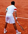 Flickr - Carine06 - Bolelli bottom.jpg