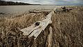 Flickr - USDAgov - 20130501-NRCS-LSC-0624.jpg