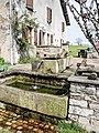 Fontaine-lavoir au Prémourey.jpg