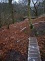 Footbridge, Old Lodge Warren - geograph.org.uk - 647922.jpg