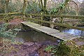 Footbridge across a stream near Foxdown Manor - geograph.org.uk - 643501.jpg