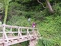 Footbridge over Hayburn Beck - geograph.org.uk - 456752.jpg