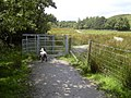 Footpath, Grane - geograph.org.uk - 1417058.jpg
