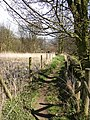 Footpath 46, off Brier Lane, Southowram - geograph.org.uk - 399019.jpg