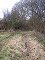 Footpath to Puddingcake Lane - geograph.org.uk - 1711406.jpg